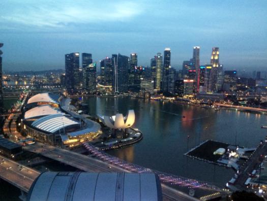 Singapore Flyer 4
