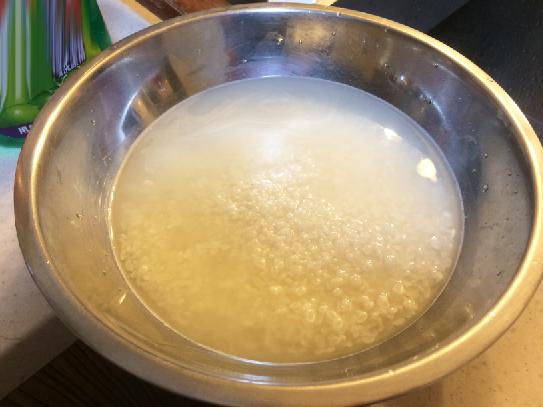 Kangen Rice 02